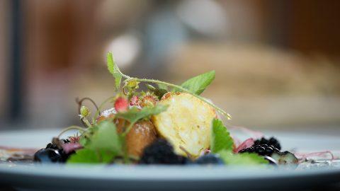 kulinarik speise 19
